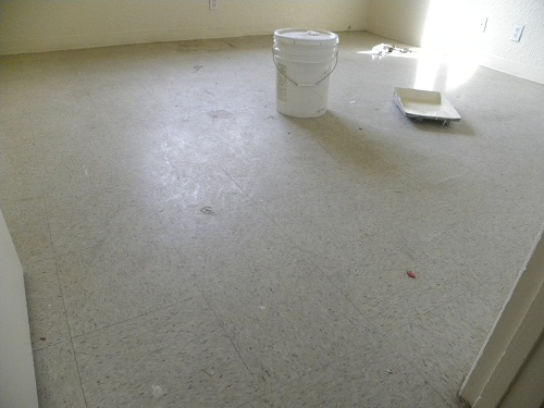 Las Cruces Superb Best Strip Wax Buff Floor Cleaning